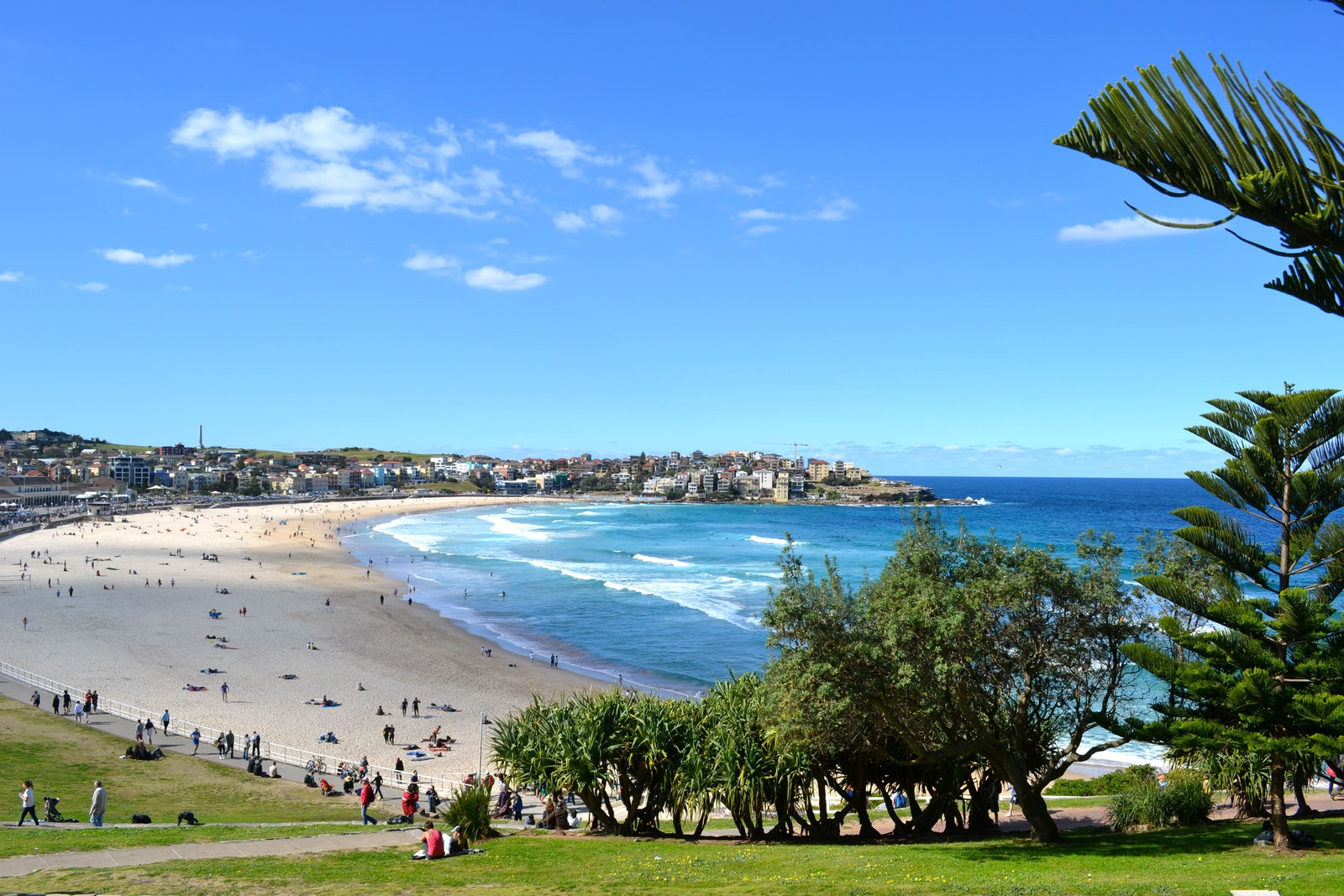 A picture of Bondi Beach located in Sydney