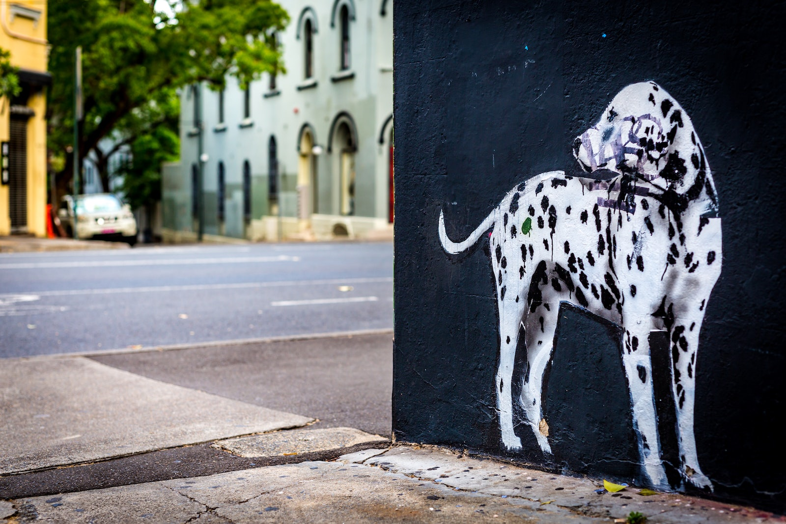 A picture of a dog artwork near Cambridge Hotel in Sydney
