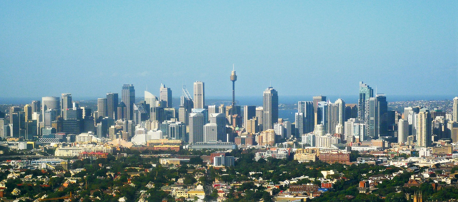 A picture of the Sydney Tower Eye only a short distance from Surry Hills